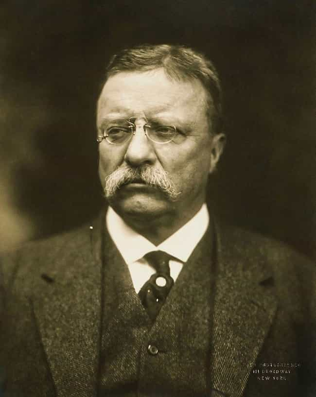 Theodore Roosevelt is listed (or ranked) 5 on the list 20 Famous People Who Were Widowed Young