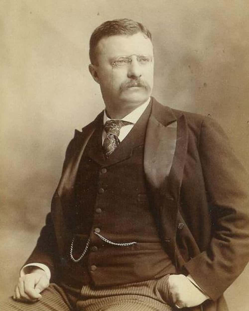 Theodore Roosevelt is listed (or ranked) 1 on the list The Best Presidential Facial Hair
