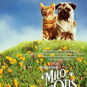 The Adventures of Milo and Oti is listed (or ranked) 4 on the list The Funniest Movies About Animals