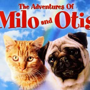 The Adventures Of Milo And Oti is listed (or ranked) 19 on the list The Greatest Classic Films the Whole Family Will Love