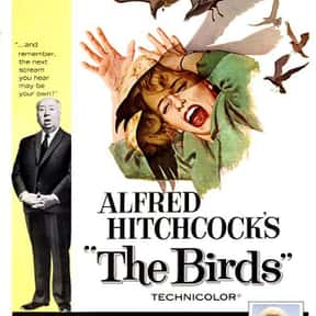 The Birds is listed (or ranked) 15 on the list The Best PG-13 Horror Movies