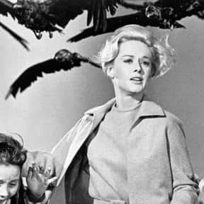 The Birds is listed (or ranked) 4 on the list Horror Movies That Don't Look Like Horror Movies