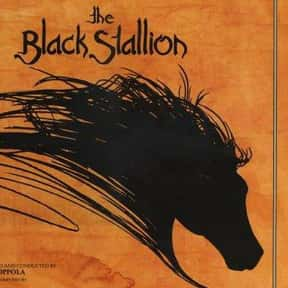 The Black Stallion is listed (or ranked) 21 on the list The Best Adventure Movies for 8 Year Old Kids