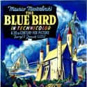 The Blue Bird is listed (or ranked) 23 on the list The Best '40s Kids Movies