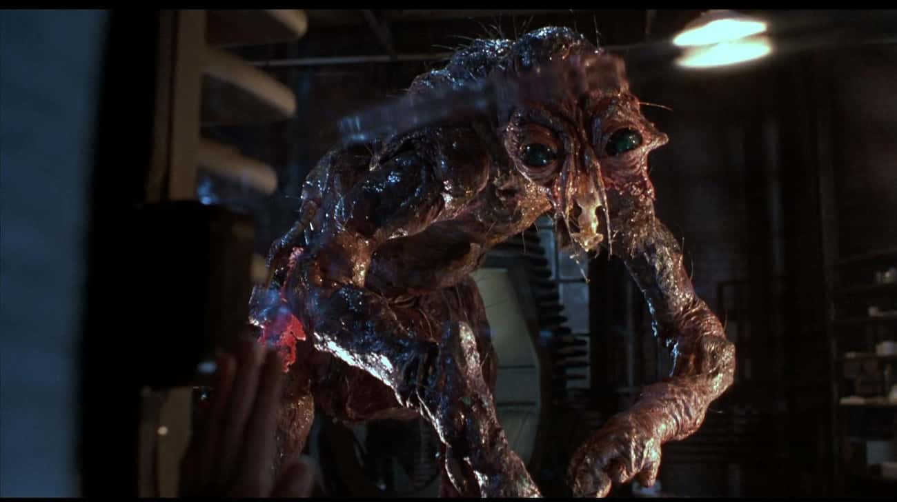 The Fly is listed (or ranked) 3 on the list 15 Nasty Body Horror Films, From 'Hard To Watch' To 'Positively Depraved'