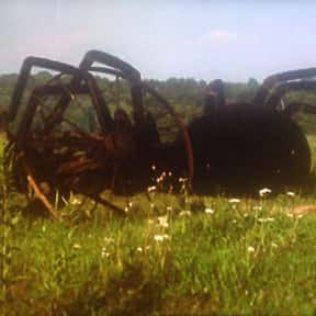 The Giant Spider Invasion is listed (or ranked) 15 on the list Movies That Have Spiders In Them