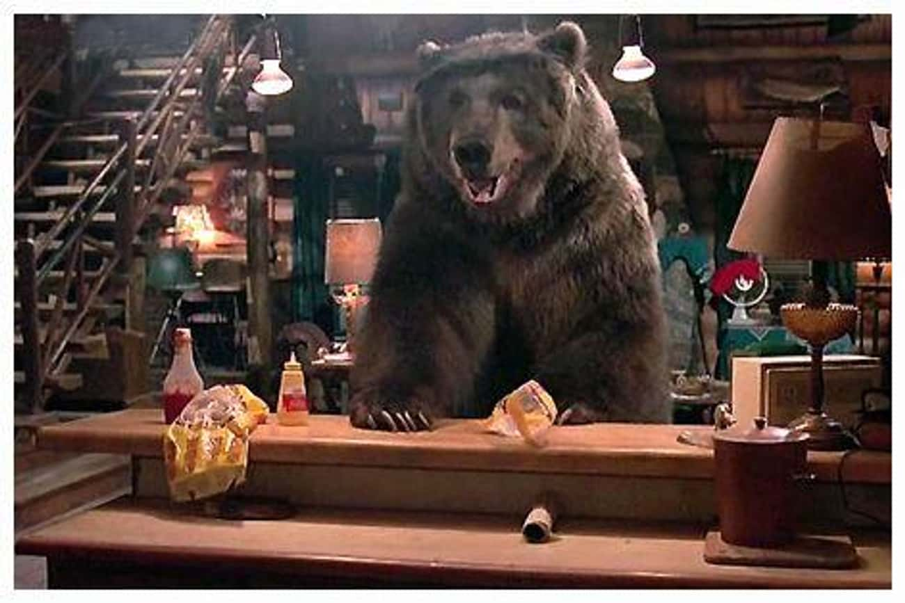 The Bear From 'The Great Outdo is listed (or ranked) 4 on the list The Saddest Fates Of Our Favorite Movie And TV Animals