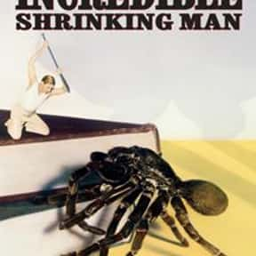 The Incredible Shrinking Man is listed (or ranked) 16 on the list The Best Sci-Fi Movies of the 1950s