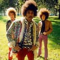 The Jimi Hendrix Experience is listed (or ranked) 19 on the list The Top Pop Artists of the 1960s