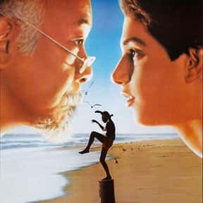 The Karate Kid is listed (or ranked) 17 on the list The Best Inspirational Movies
