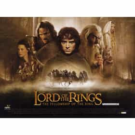 a review of the first movie of the lord of the rings trilogy the fellowship of the ring Story the fellowship of the ring is the first movie in the lord of the rings trilogy , directed by peter jackson the movie is based closely on the well-loved book.