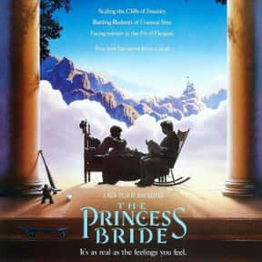The Princess Bride is listed (or ranked) 19 on the list The Best Movies for Families