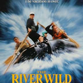 The River Wild is listed (or ranked) 8 on the list The Best Thriller Movies with a Kidnapping