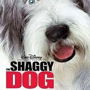 The Shaggy Dog is listed (or ranked) 7 on the list The Best Dog Movies for Kids
