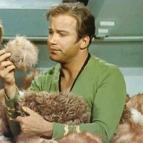 """The Trouble With Tribbles is listed (or ranked) 22 on the list The Best Single Episodes in Television History"