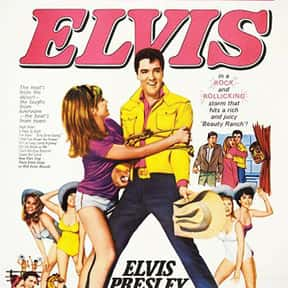 Tickle Me is listed (or ranked) 21 on the list The Best Elvis Presley Movies