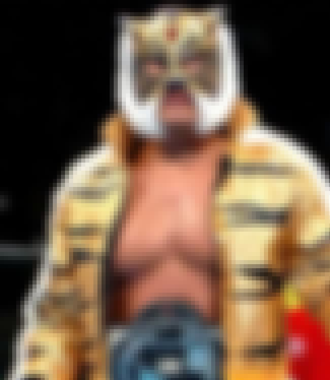 Tiger Mask IV is listed (or ranked) 8 on the list The Greatest Pro Wrestlers of All Time