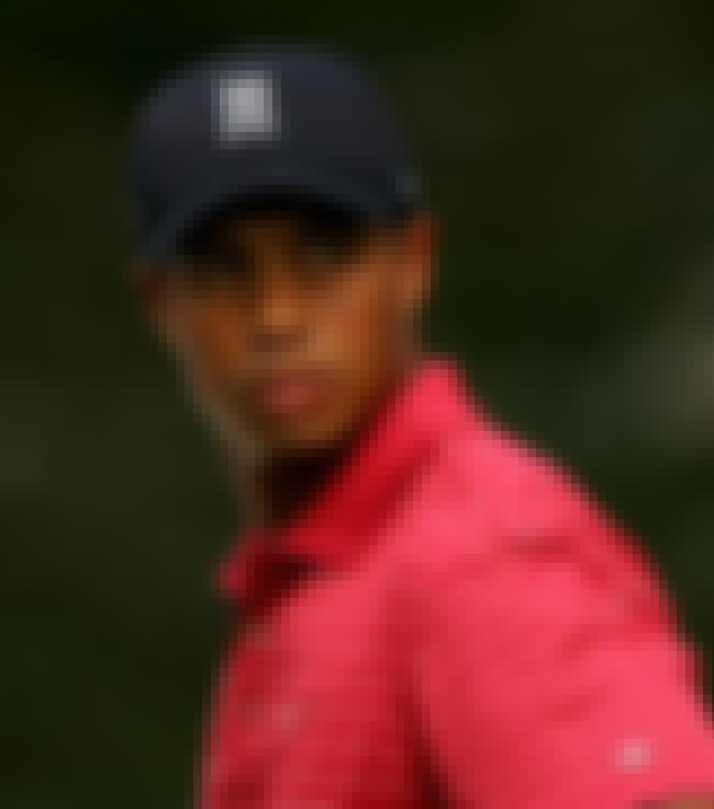 Tiger Woods is listed (or ranked) 3 on the list Celebrities Who Have Been Caught with Hookers