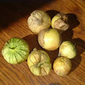 Tomatillo is listed (or ranked) 10 on the list Vegetables That Are Technically Fruits
