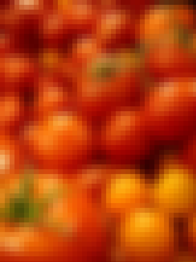 Tomato is listed (or ranked) 4 on the list Harsh Truths About Healthy Foods and What You Can Do About It