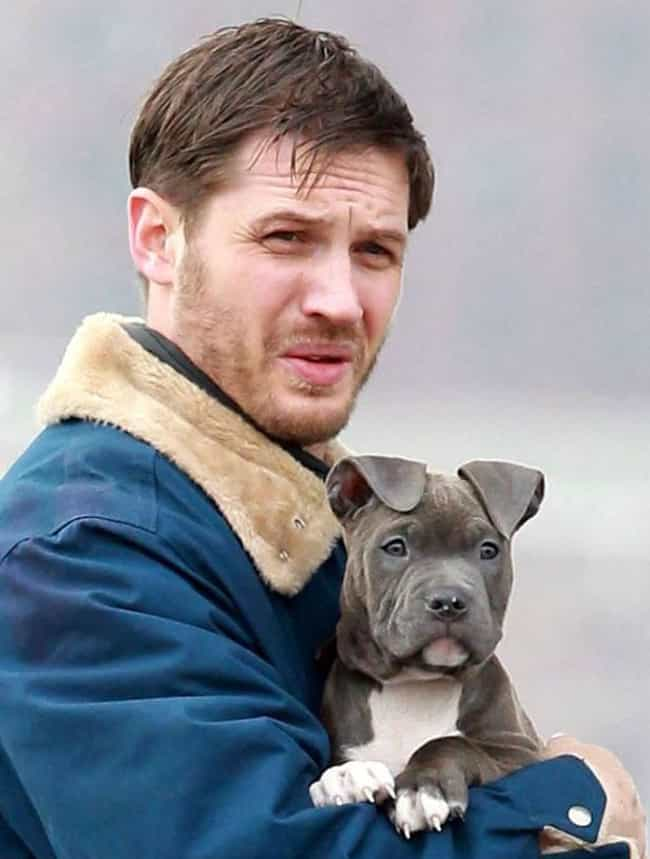 Tom Hardy is listed (or ranked) 7 on the list The Best Photos of Celebrities Walking Their Dogs