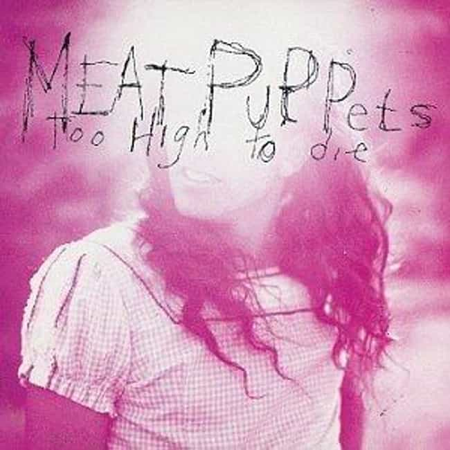 Too High to Die is listed (or ranked) 4 on the list The Best Meat Puppets Albums of All Time