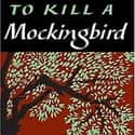 To Kill a Mockingbird is listed (or ranked) 23 on the list Famous Novels With The Catchiest First Lines