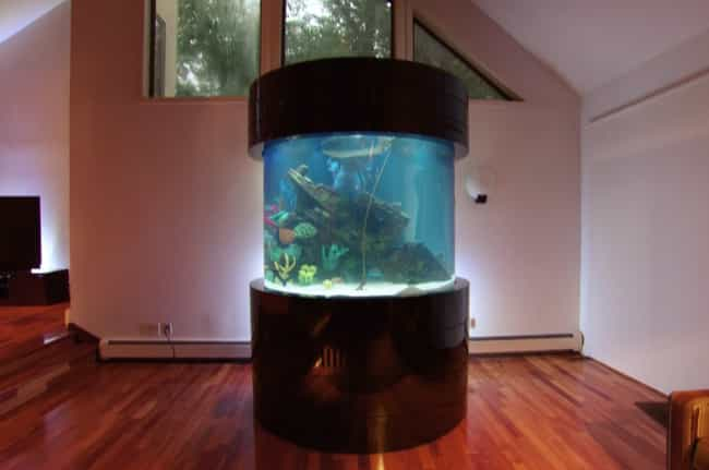 Tracy Morgan is listed (or ranked) 1 on the list 29 Celebrities with Incredible Fish Tanks