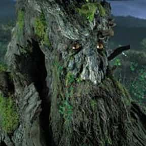Treebeard is listed (or ranked) 8 on the list The Coolest Characters in Middle-Earth