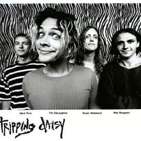 Tripping Daisy is listed (or ranked) 25 on the list List of Famous Bands from Dallas