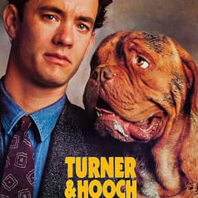 Turner & Hooch is listed (or ranked) 20 on the list The Best Tom Hanks Movies
