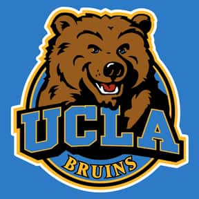 UCLA Bruins men's basketball is listed (or ranked) 18 on the list Basketball Teams with the Most Annoying Fans