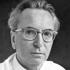 Viktor Frankl is listed (or ranked) 15 on the list Famous People Buried in Vienna