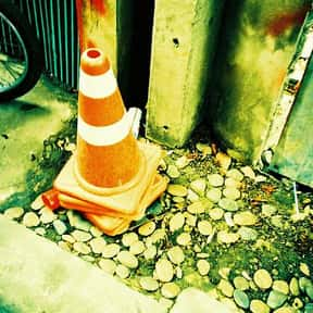 VLC media player is listed (or ranked) 12 on the list Essential Software/Apps We Can't Live Without