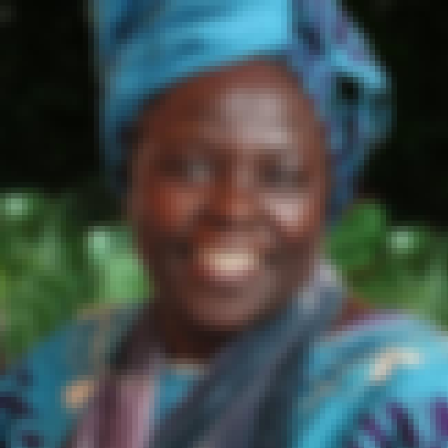 Wangari Maathai is listed (or ranked) 7 on the list Famous People Who Died of Ovarian Cancer