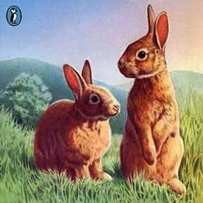 Watership Down is listed (or ranked) 19 on the list Good Books for 12 Year Olds