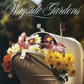 Wayside Gardens is listed (or ranked) 18 on the list Companies Headquartered in South Carolina