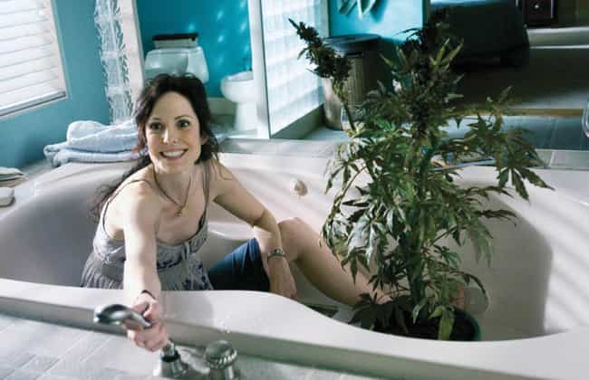 Weeds is listed (or ranked) 4 on the list TV Shows That Progressively Got Worse