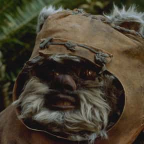 Wicket W. Warrick is listed (or ranked) 10 on the list Which 'Star Wars' Character Is The Best Skateboarder?