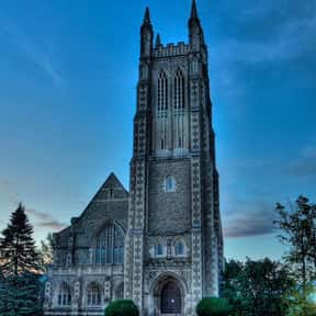 Williams College is listed (or ranked) 24 on the list Black Enterprise's Top 50 Colleges For African Americans