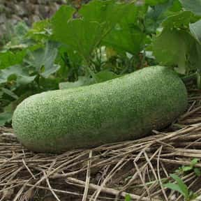 Winter melon is listed (or ranked) 13 on the list Vegetables That Are Technically Fruits