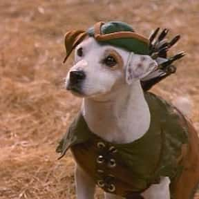 Wishbone is listed (or ranked) 2 on the list The Greatest TV Shows About Dogs