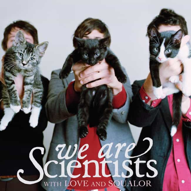 With Love and Squalor is listed (or ranked) 4 on the list The Best (Real) Album Covers With Cats