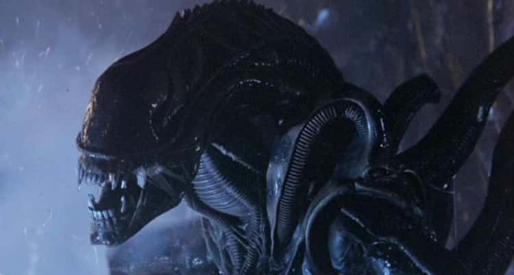 Xenomorph, 'Alien'
