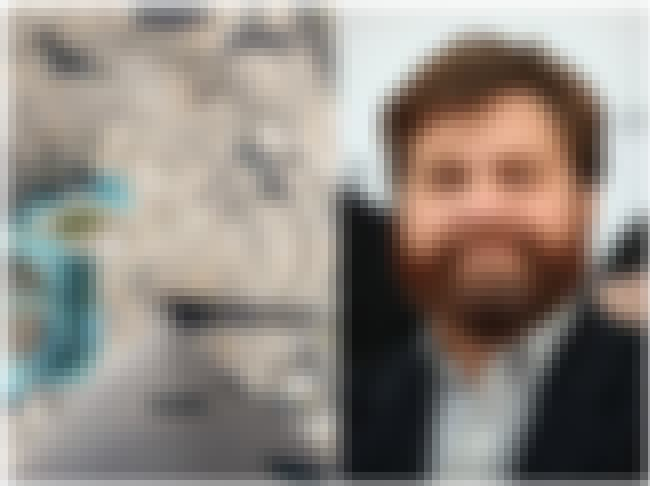 Zach Galifianakis is listed (or ranked) 4 on the list 32 Celebrities Who Have Insane Phobias