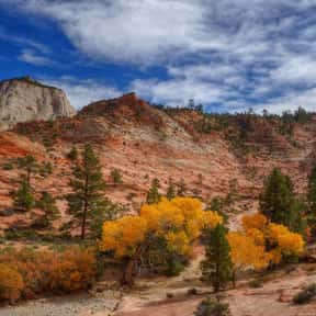 Zion National Park is listed (or ranked) 3 on the list The Best National Parks in the USA