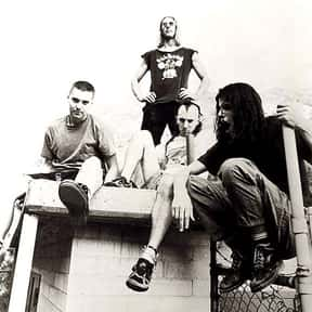 Tool is listed (or ranked) 12 on the list The Greatest Musical Artists of the '90s