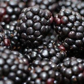 Blackberry is listed (or ranked) 7 on the list The Best Antioxidant Foods