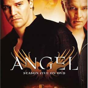 Angel is listed (or ranked) 20 on the list The Best Cult TV Shows of All Time