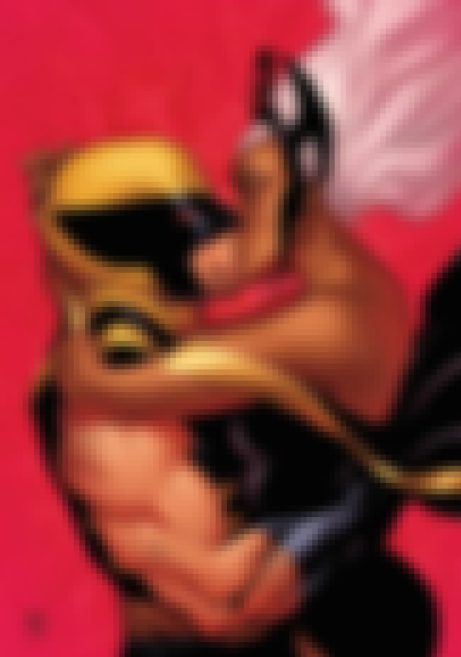 Storm is listed (or ranked) 1 on the list Wolverine's Long List of Lovers